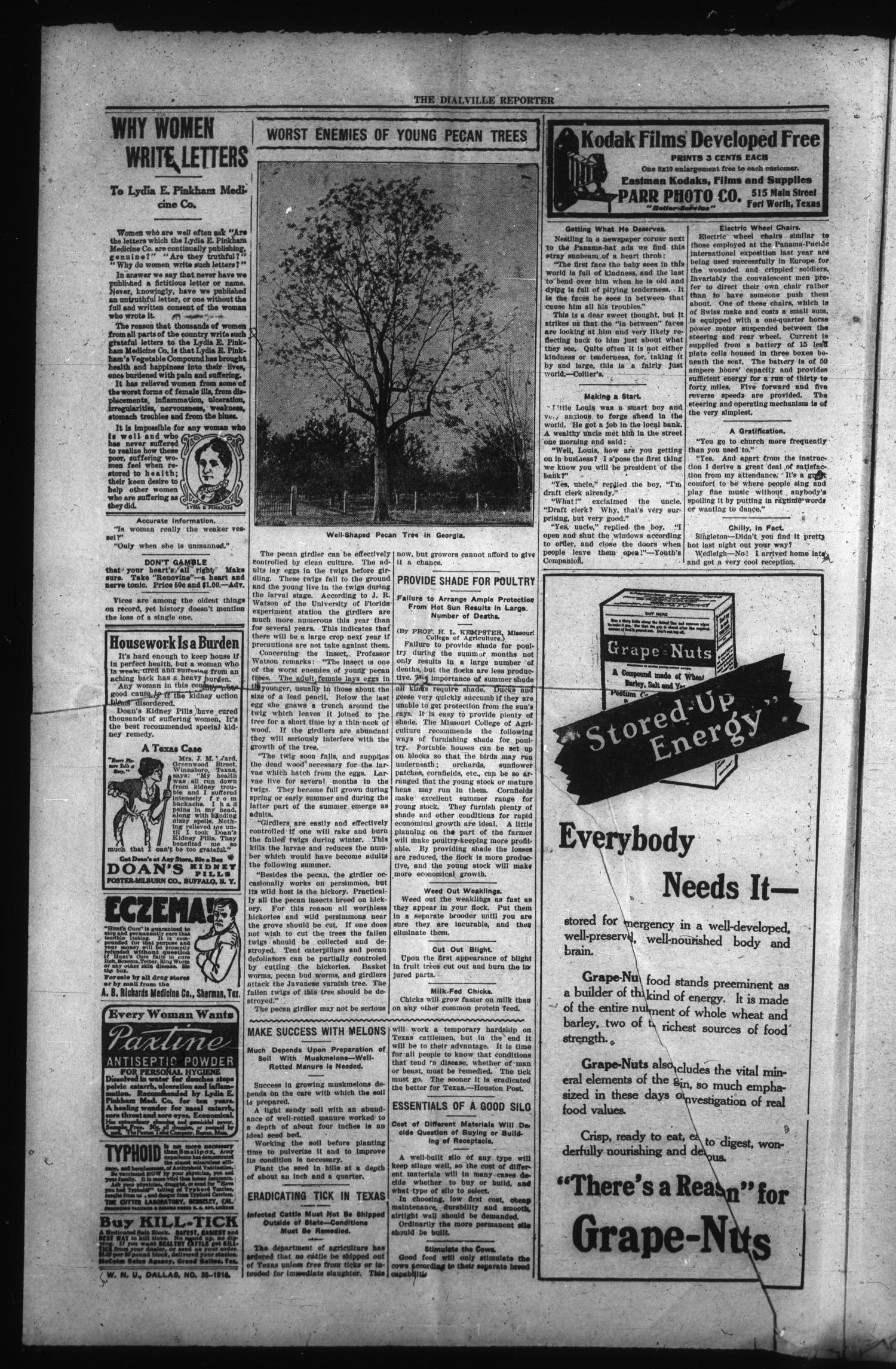 The Dialville Reporter (Dialville, Tex.), Vol. 1, No. 5, Ed. 1 Friday, August 25, 1916                                                                                                      [Sequence #]: 2 of 8