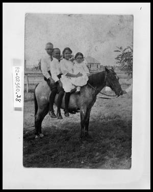 Four Kids on Horse