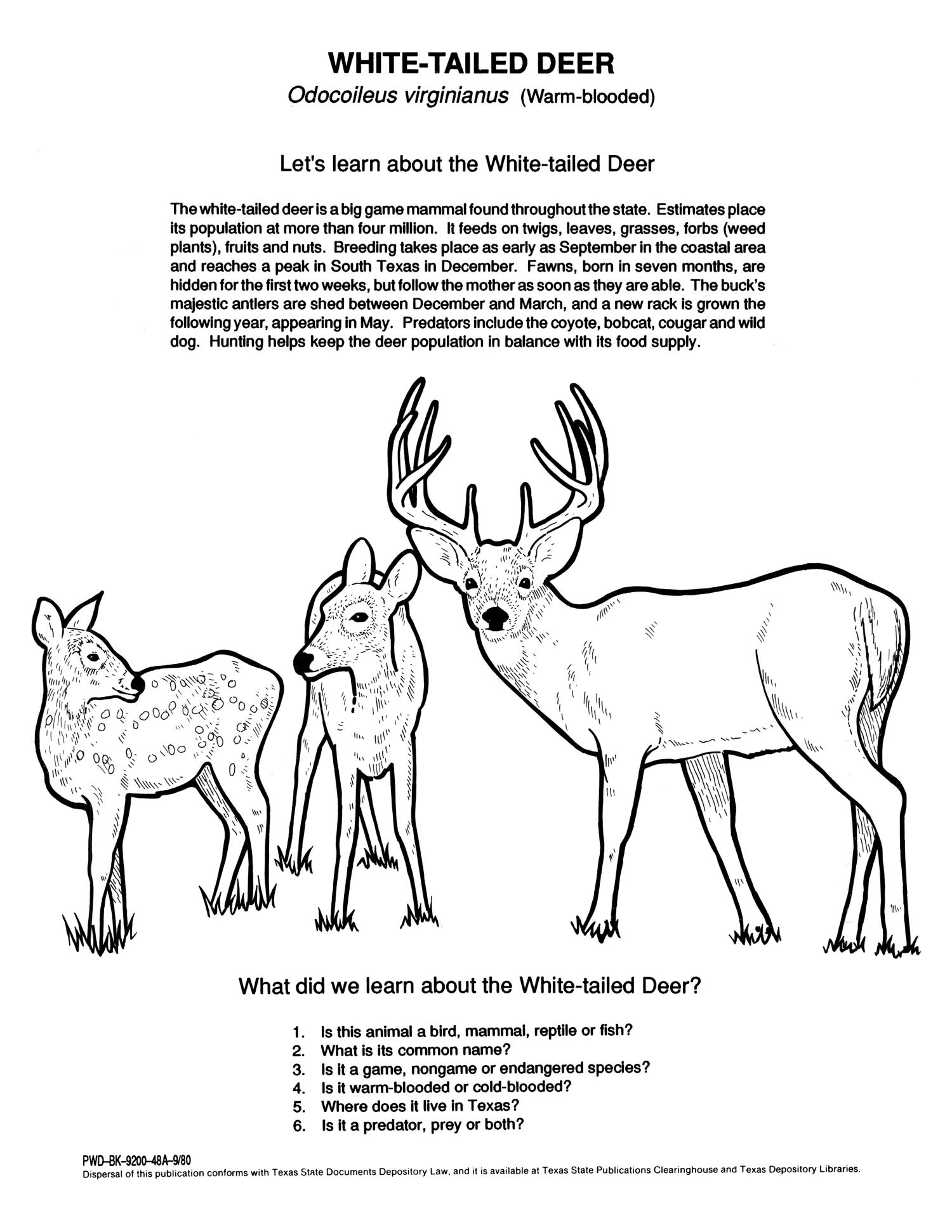 Texas Wildlife Coloring Book - Page 8 of 8 - The Portal to ...