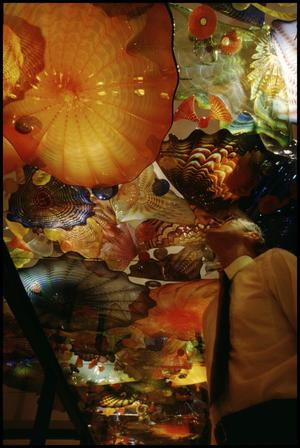 Primary view of object titled 'Dale Chihuly: Installations 1964-1994 [Photograph DMA_1502-76]'.