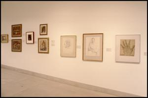 Primary view of object titled 'Images of Mexico: The Contribution of Mexico to 20th Century Art [Photograph DMA_1416-60]'.