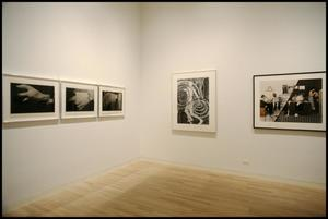 Primary view of object titled 'Recent Acquisitions: Photography [Photograph DMA_1372-05]'.