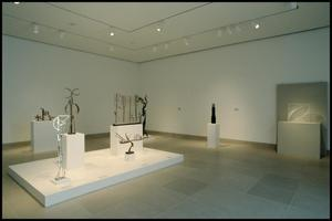 Primary view of object titled 'A Century of Modern Sculpture: The Patsy and Raymond Nasher Collection [Photograph DMA_1400-17]'.