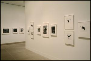 Primary view of object titled 'Aaron Siskind: Fifty Years [Photograph DMA_1386-03]'.
