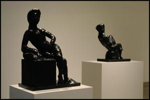 Primary view of object titled 'A Century of Modern Sculpture: The Patsy and Raymond Nasher Collection [Photograph DMA_1400-14]'.