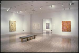 Primary view of Brice Marden, Work of the 1990s: Paintings, Drawings, and Prints [Photograph DMA_1565-10]