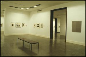 Primary view of object titled 'Counterparts: Form and Emotion in Photographs [Photograph DMA_1313-10]'.