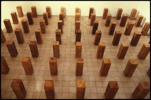 Primary view of object titled 'Carl Andre Sculpture 1959-1977 [Photograph DMA_1292-02]'.