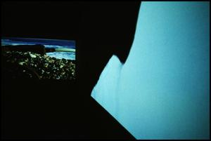 Primary view of object titled 'Concentrations 33: Doug Aitken, Diamond Sea [Photograph DMA_1350-41]'.