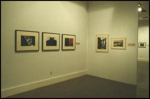 Primary view of object titled 'Counterparts: Form and Emotion in Photographs [Photograph DMA_1313-02]'.