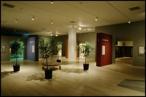 Primary view of ART/Artifact [Photograph DMA_1418-03]