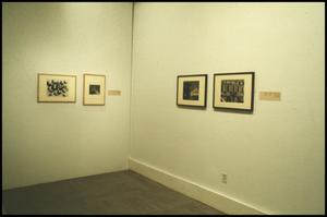 Primary view of object titled 'Counterparts: Form and Emotion in Photographs [Photograph DMA_1313-13]'.