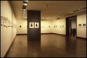 Primary view of object titled 'Photography: The Selected Image [Photograph DMA_1291-03]'.