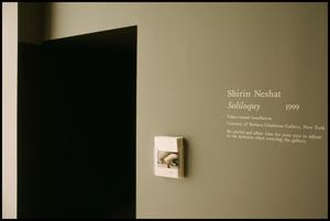 Primary view of object titled 'Concentrations 34: Shirin Neshat [Photograph DMA_1580-01]'.