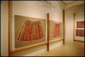 Primary view of object titled 'Coastal Color: Textiles from Guatemala's Pacific Foothills [Photograph DMA_1399-03]'.