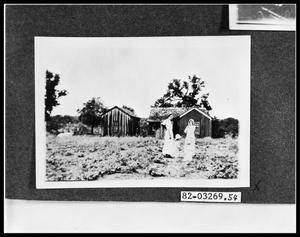 Primary view of object titled 'Women by Farmhouse in Field'.