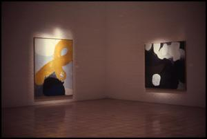 Primary view of object titled 'James Brooks [Photograph DMA_0231-03]'.