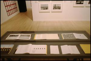 Primary view of object titled 'Photography in Contemporary German Art: 1960 to the Present [Photograph DMA_1473-05]'.