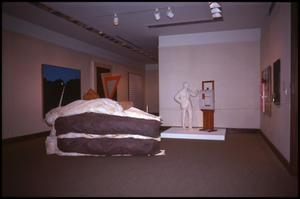 Primary view of object titled 'American Art Since 1945 [Photograph DMA_1260-02]'.