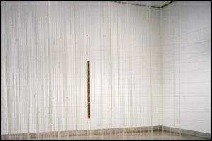 Primary view of object titled 'Concentrations 36: Annette Lawrence [Photograph DMA_1588-08]'.