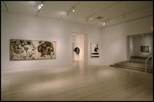Primary view of object titled 'Dallas Museum of Art Installation: Contemporary Art [Photograph DMA_90015-100]'.