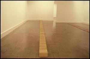 Primary view of object titled 'Carl Andre Sculpture 1959-1977 [Photograph DMA_1292-01]'.