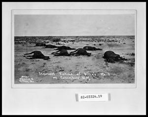 Primary view of object titled 'Dead Horses After Raid'.