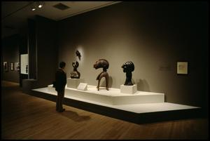 Primary view of object titled 'Primitivism in 20th Century Art: Affinity of the Tribal and the Modern [Photograph DMA_1371-065]'.
