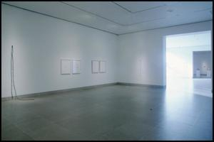 Primary view of object titled 'Linda Ridgway: A Survey, The Poetics of Form [Photograph DMA_1548-07]'.