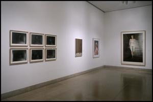 Primary view of object titled 'Gerhard Richter in Dallas Collections [Photograph DMA_1583-28]'.