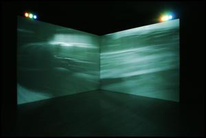 Primary view of object titled 'Concentrations 37: Jane and Louise Wilson [Photograph DMA_1602-09]'.