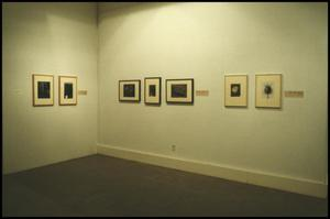 Primary view of object titled 'Counterparts: Form and Emotion in Photographs [Photograph DMA_1313-11]'.
