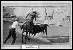 Primary view of object titled 'Bullfighting'.