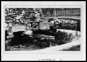 Primary view of object titled 'Alligator Pool #1'.
