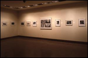 Primary view of object titled 'Works on Paper: Southwest, 1978 [Photograph DMA_0258-04]'.