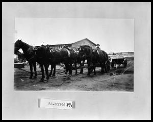 Primary view of object titled 'Horse Drawn Wagon'.