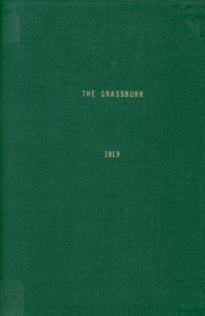 Primary view of object titled 'The Grassburr, Yearbook of John Tarleton Agricultural College, 1919'.