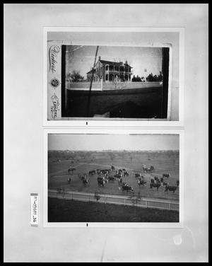 Primary view of object titled 'House Exterior; Cattle Roundup'.