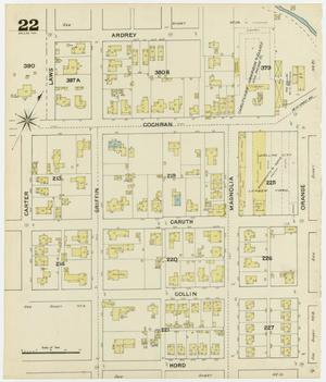 Primary view of object titled 'Dallas 1888 Sheet 22'.