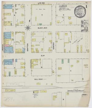 Primary view of object titled 'Dublin 1891 Sheet 1'.