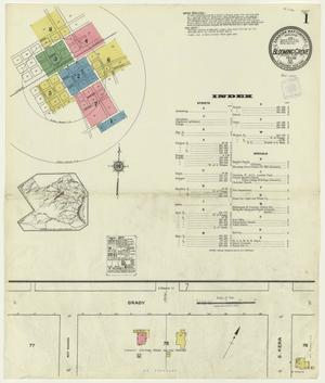 Primary view of object titled 'Blooming Grove 1921 Sheet 1'.