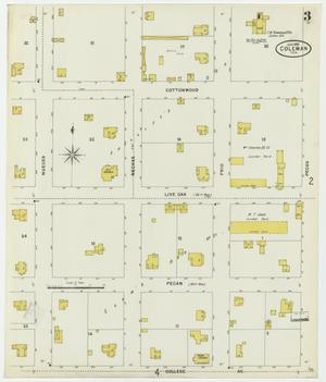 Primary view of object titled 'Coleman 1898 Sheet 3'.