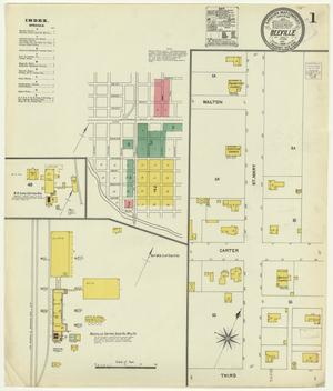 Primary view of object titled 'Beeville 1904 Sheet 1'.
