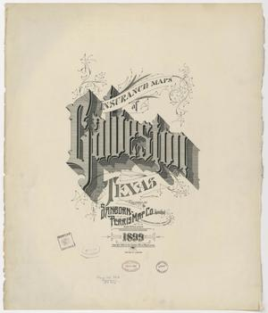 Primary view of object titled 'Galveston 1899 - Title Page'.