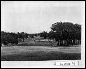 Primary view of object titled 'Men on Golf Course'.
