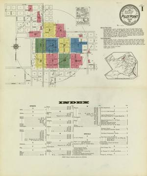 Primary view of object titled 'Pilot Point 1921 Sheet 1'.