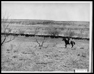 Primary view of object titled 'Cowboy Herding Cattle'.