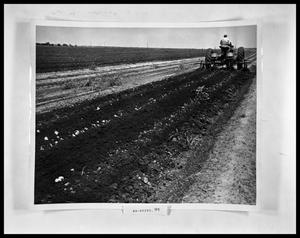 Primary view of object titled 'Man on Tractor in Field'.