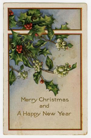 Primary view of object titled '[Postcard of Mistletoe and Berries]'.
