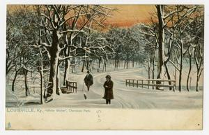 Primary view of object titled '[Postcard of White Winter in Cherokee Park]'.
